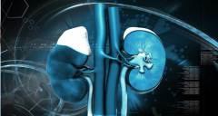 Prevenção da doença renal