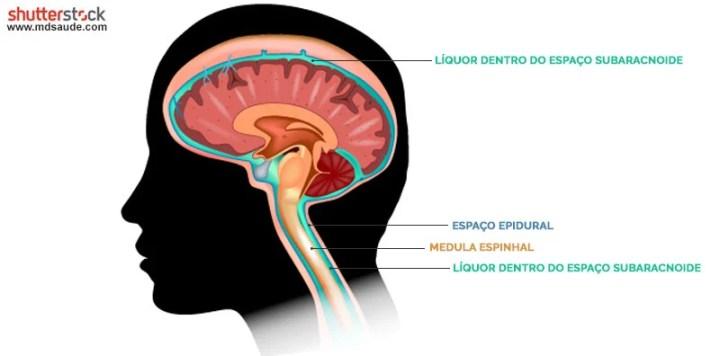Circulação do líquido cefalorraquidiano