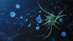 Vírus e câncer