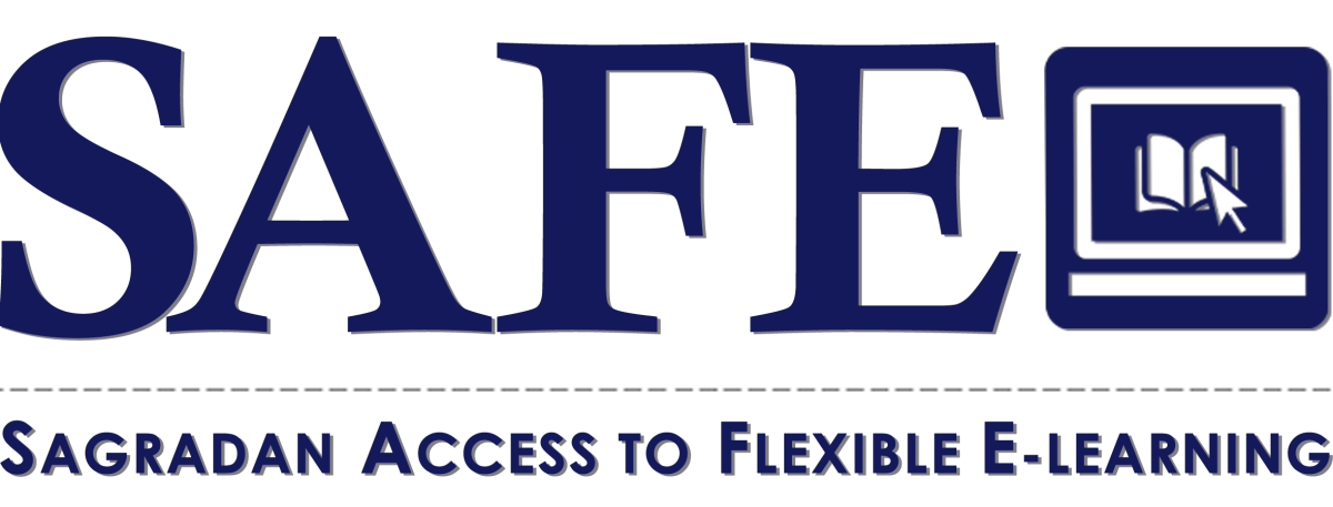 MDSFs Learning Continuity Programs
