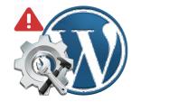 WordPress Functions.php is corrupted Hatası ve Çözümü