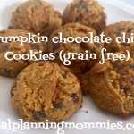 Pumpkin Chocolate Chip Cookies (Grain Free)