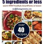 Weight Watchers Friendly Recipes that are 5 Ingredients or Less