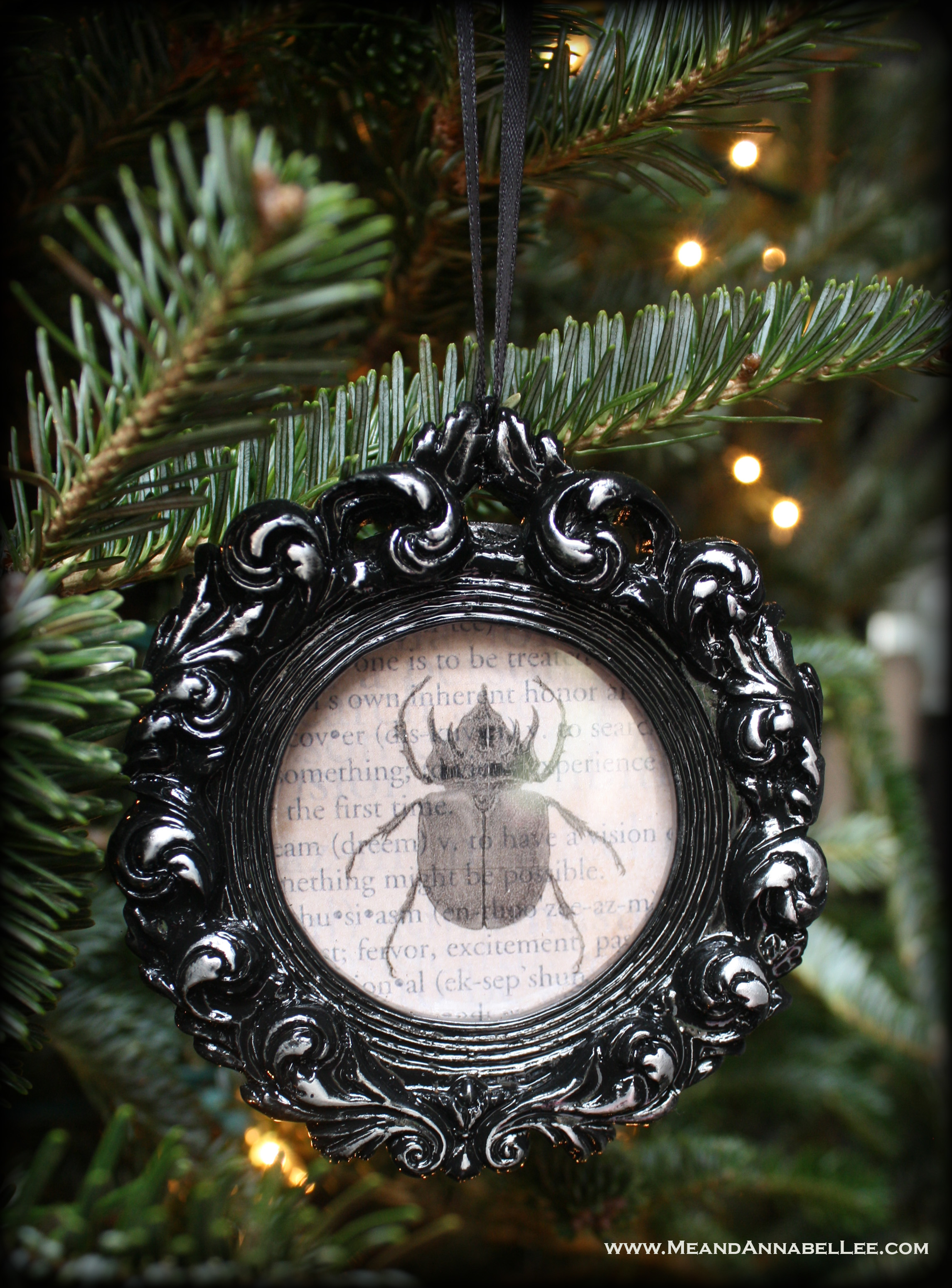 Beautiful Black Gothic Christmas Ornaments | Framed Insects | Me and Annabel Lee HU73