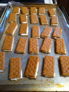 Graham Crackers and Marshmallow Fluff