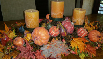 Thanksgiving 2014 1