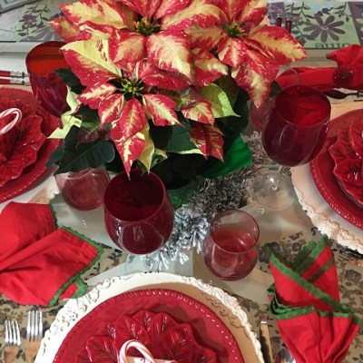 Flower Of The Holy Night….Or Better Known AS The Poinsettia!