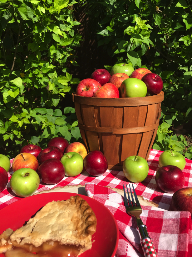 apple orchards allow me apples on my table