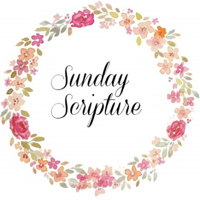 Scripture Sunday And More….