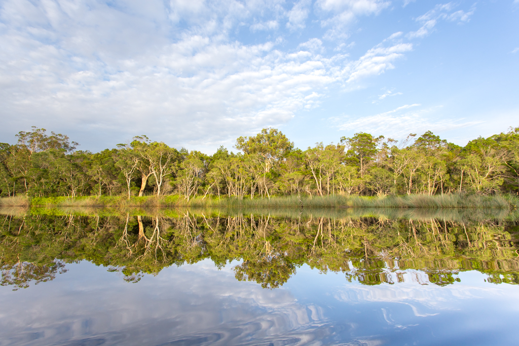 Noosa Everglades Reflections River Mirrors Kayak Overnight Tour