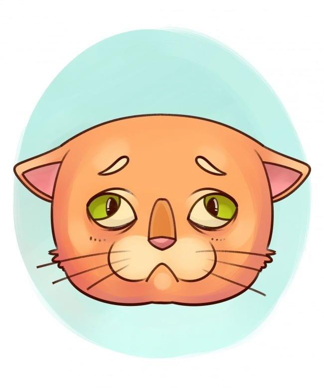 se-algum-destes-sintomas-aparecer-leve-seu-bichinho-imediatamente-ao-veterinario14
