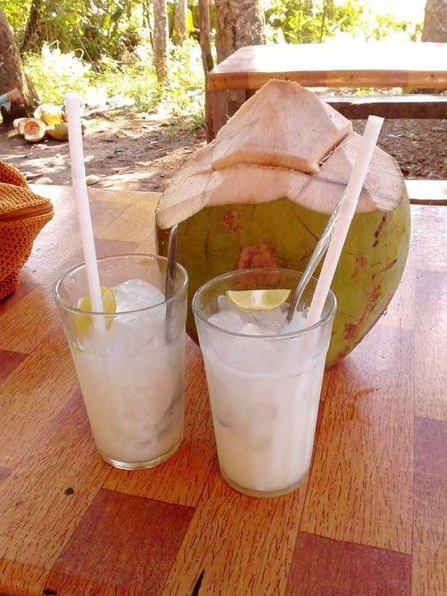 8-bebidas-naturais-que-aceleram-o-metabolismo-e-tonificam-sua-silhueta7