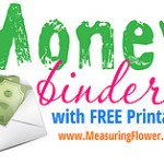 Our Money Binder {Plus Free Printables}