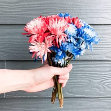 bouquet of red and blue flowers
