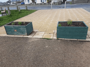 Laytown Tidy Towns beds2
