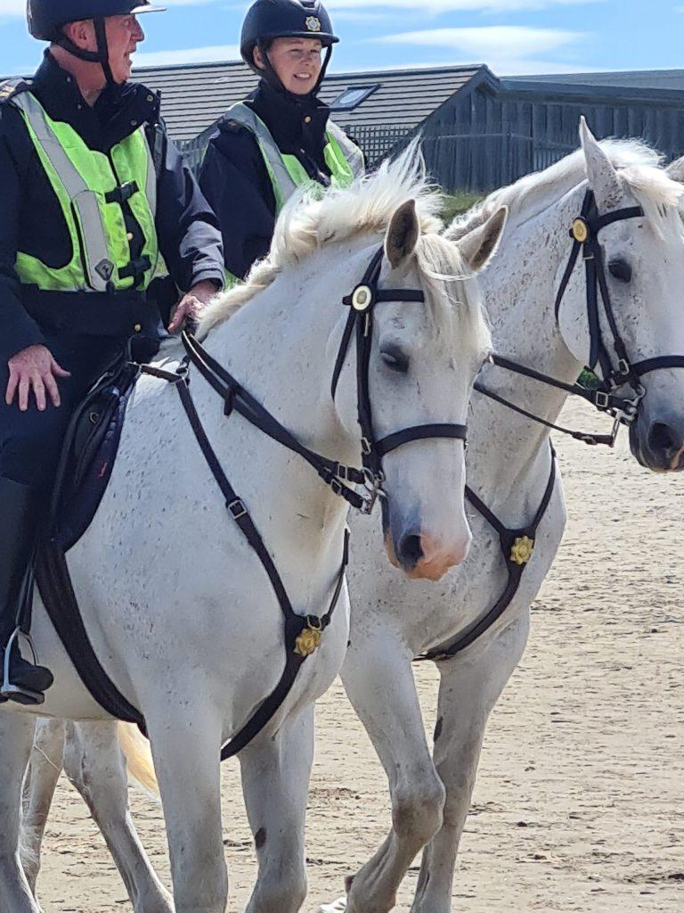 Garda Mounted Unit
