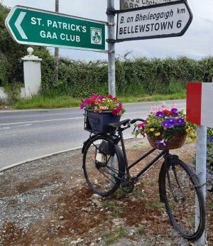 Stamullen Summer flower bike