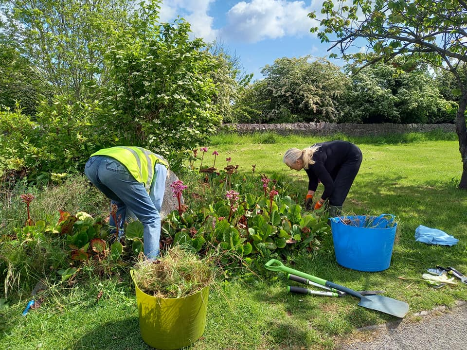 A few people working in a garden Description automatically generated with low confidence