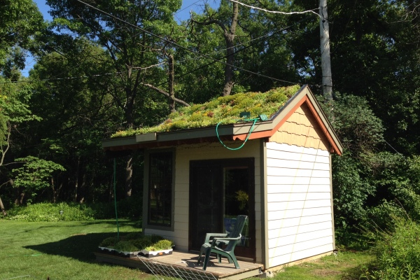 Vegetated Roof