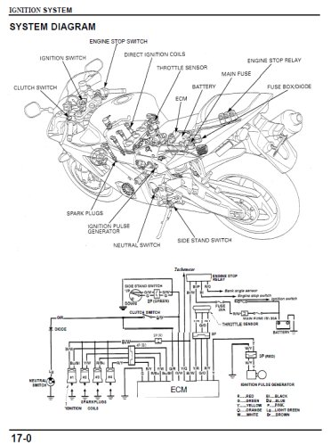 Cbr 954rr Wiring Diagram Get Free Image About Rc51 Wiring