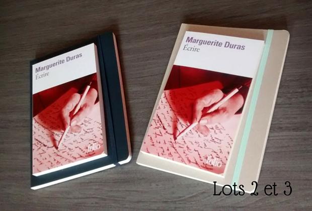 Un carnet et un livre