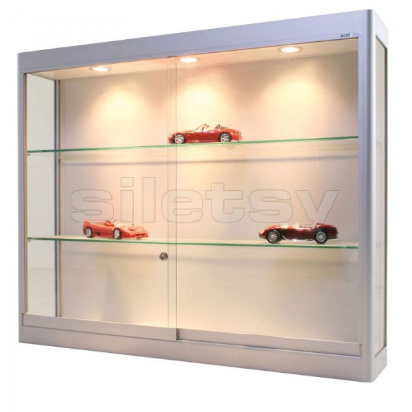 vitrine pour miniatures automobiles