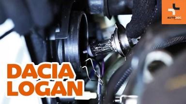Dacia Logan 1 Glühlampen