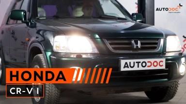 Honda CR-V Scheinwerfer Glühlampe