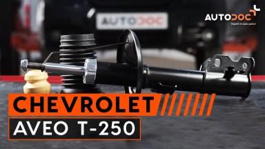 Chevrolet Aveo T-250 vordere Stoßdämpfer mit Backen