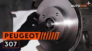 Peugeot 307 Bremsen hinten