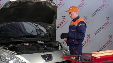 Peugeot 307 Luftfilter