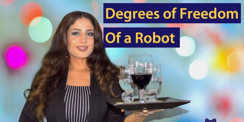 Everything About the Degrees of Freedom of a Robot