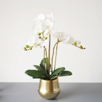 Artificial White Flowers In Vase Gallery - Flower ...