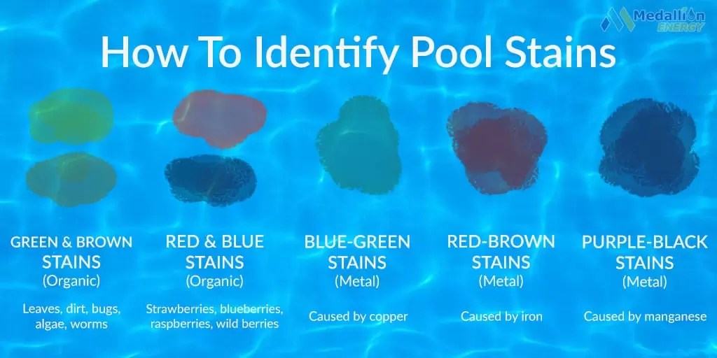 Pool Stain Removal 101 A Quick Guide To Removing Pool Stains