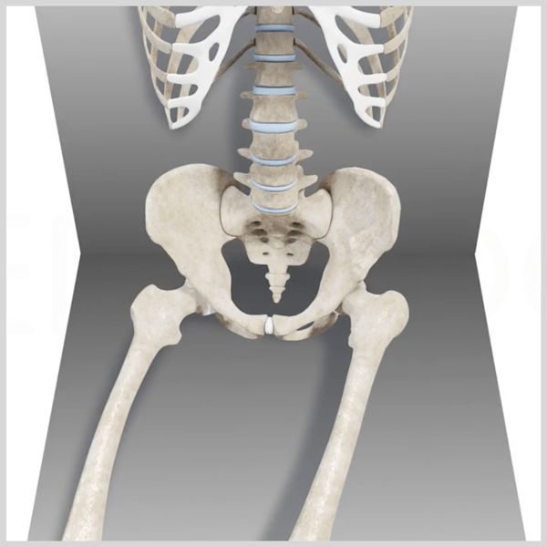4 Common Problems with Wheelchair Pelvic PositioningAnd