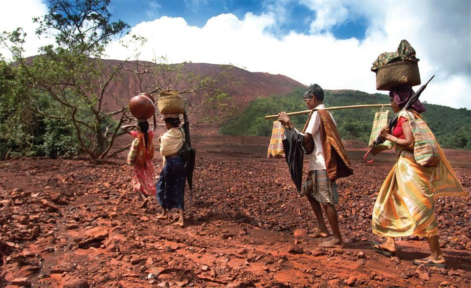 Tribal Health