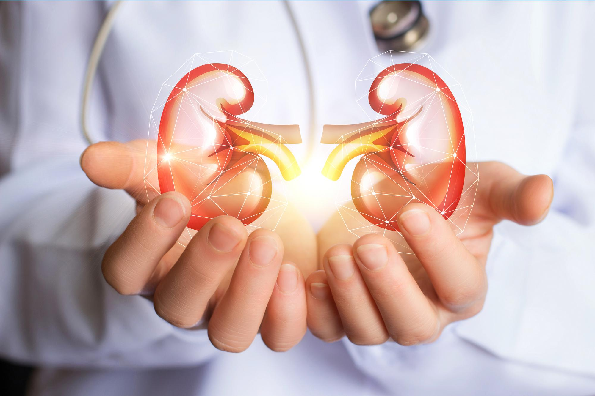 What are the methods for Measuring Renal Function?