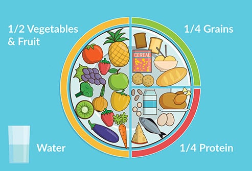meal portion infographic