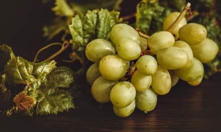 Les bienfaits des Raisins