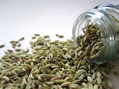 La consommation du sana (Séné) et du sanut (graines de fenouil).