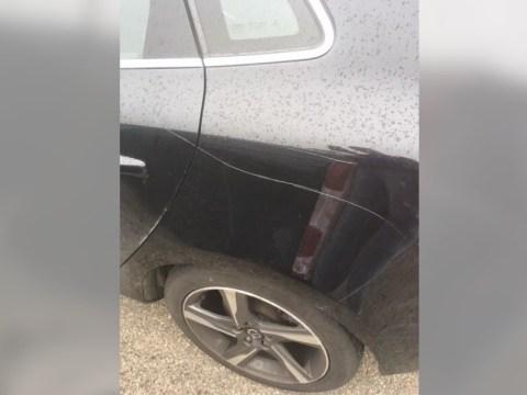 Twee diepe krassen in de auto van Maartje Zwaan (Foto aangeleverd)