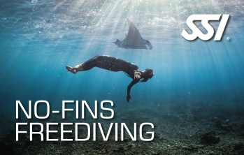 No Fins Freediving