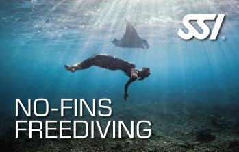 No Fins Freediving