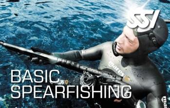 Basic Spearfishing