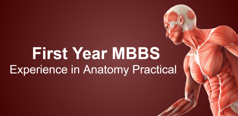 First Year MBBS -feature-graphic