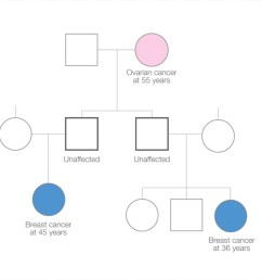 family tree diagram showing individuals affected by cancer [ 1280 x 720 Pixel ]