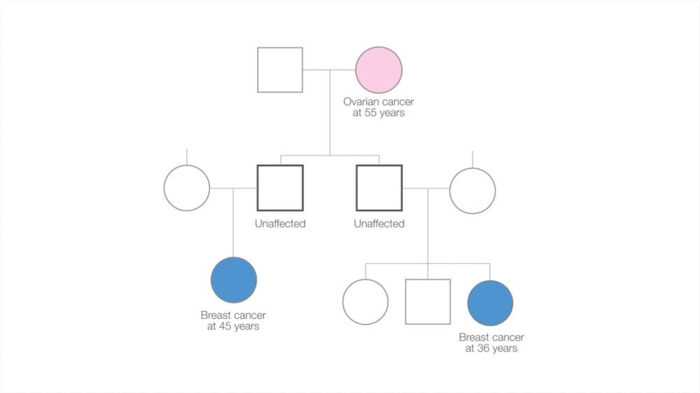 medium resolution of family tree diagram showing individuals affected by cancer