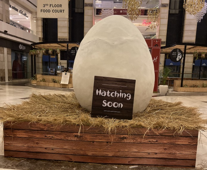 Nando's Hatching Soon1