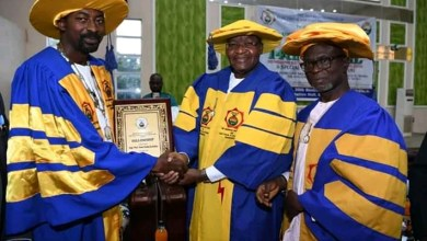 Photo of Danbatta bags Fellowship of the IEEE