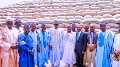 Photo of Insecurity create lull in tourism, ripple effect on economy- Buhari